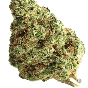 gas-house-ice-blue-cbd-sativa-citrus-spicy-earthy-greenhouse-grown